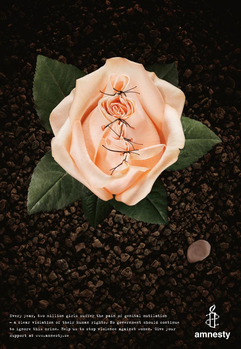 Sign a Rose Petal